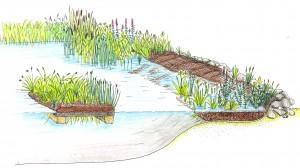 15 Tipps Für Klares Wasser Natürliche Algenbekämpfung Klarteich